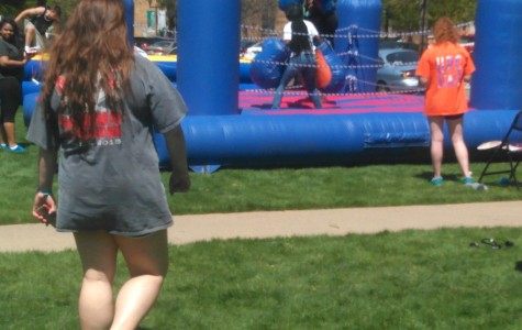 Fun in the Sun at Springfest