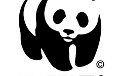 The Endangered Species List Grows Shorter