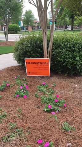Satire: The Orange T-shirt Militia and Their Orange Signs