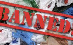 Jamaica's Ban on Plastics