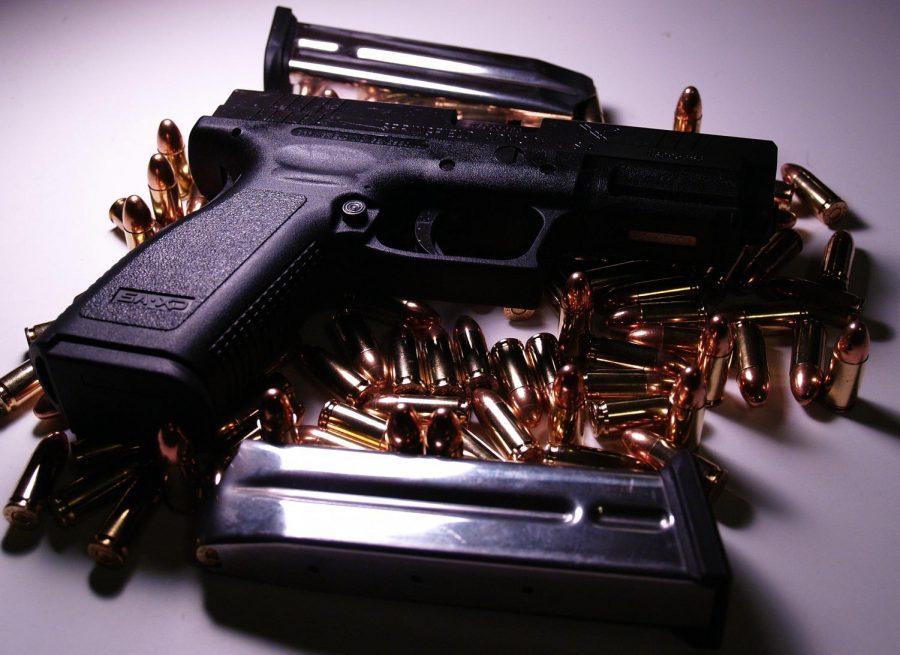 How+New+Zealand%E2%80%99s+Recent+Gun+Control+Might+Affect+the+U.S