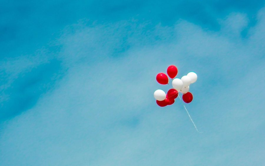 Ingested and Entangled: How Harmful Can a Balloon Really Be?