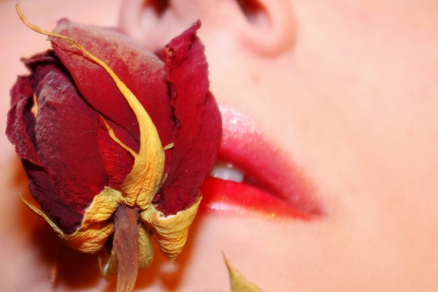 Woman holding a delicate rose to her lips