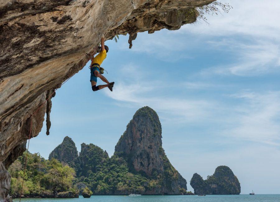 Mastering+the+Climb