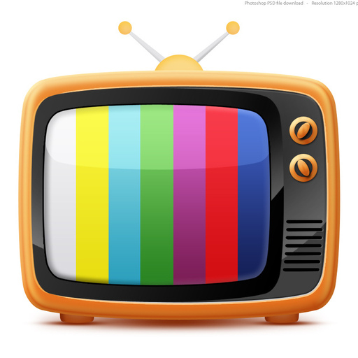 Reality TV: Real or a Fantasy